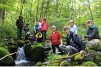 Школа дикой природы