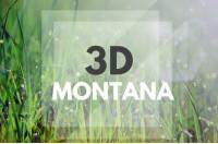3D MONTANA. Montana Camp. Английский язык