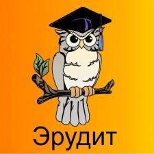 """Школа вожатых детского лагеря """"Эрудит"""""""