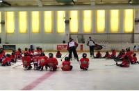 """Хоккейный лагерь """"Цыгурова"""" для защитников"""