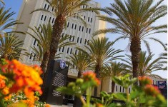 Jey Study. Калифорнийский Университет - Фуллертон
