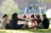 Университет Сассекс