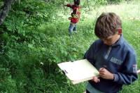 OSI. BioTech – На Деревьях. Тайны мира растений