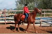 Hobbycamp Весенний конный лагерь VSedlo.ru