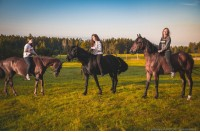 Конный лагерь Horse Paradise