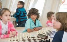 Феникс. Шахматный фестиваль и сборы