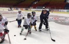 Хоккейный лагерь в Дечине