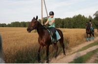 Конный клуб Super horse